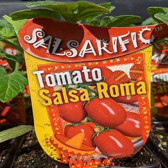 "Tomato - Salsa Roma  4"""