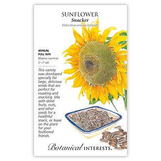 Sunflower Snacker hybrid