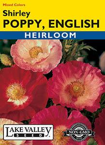 POPPY ENGLISH SHIRLEY MIXED COLORS   HEIRLOOM