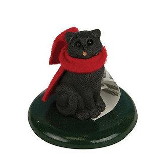 SC BLACK CAT