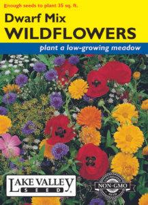 WILDFLOWERS DWARF MIXTURE