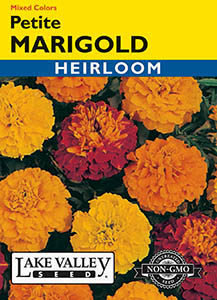 MARIGOLD PETITE MIXED COLORS  HEIRLOOM