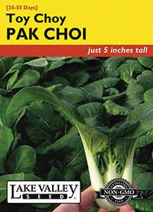 PAK CHOI TOY CHOY