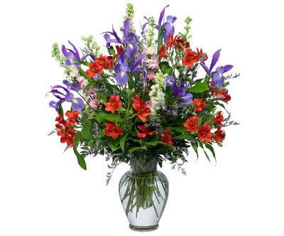 Alstros & Irises