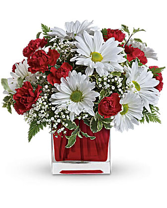Red And White Delight by Teleflora