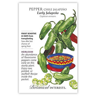 Pepper Chile Jalapeno Early