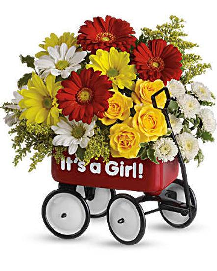 Baby's Wow Wagon by Teleflora - Girl