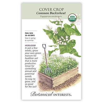 Cover Crop Buckwheat Org