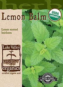 ORGANIC LEMON BALM  HEIRLOOM