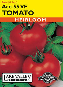 TOMATO BUSH ACE 55 VF  HEIRLOOM