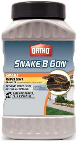 2LB Snake B Gon