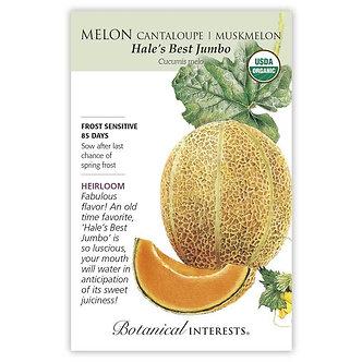 Melon Hales Best Jumbo Org