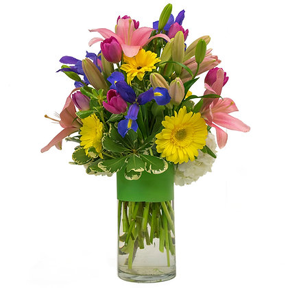 Pink Asiatic Lilies blue Irises purple/pink Van Dyke Tulips white Hydrangeas and yellow Gerber Daisies