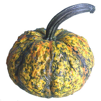 Small Warty Carnival Pumpkin