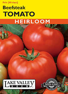 TOMATO POLE BEEFSTEAK   HEIRLOOM