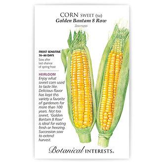 Corn Golden Bantam 8 Row (yellow)