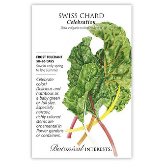 Swiss Chard Celebration