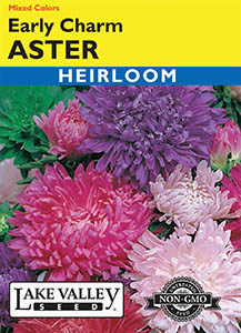 ASTER EARLY CHARM MIXED COLORS  HEIRLOOM