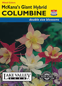 COLUMBINE MCKANA'S GIANT MIXED COLORS  HEIRLOOM