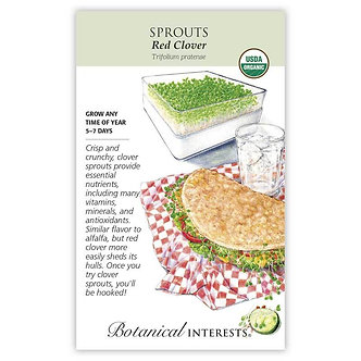Sprouts Red Clover Org