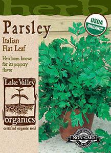 ORGANIC PARSLEY ITALIAN FLAT LEAF   HEIRLOOM