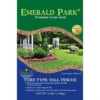 Emerald Park Tall Fescue