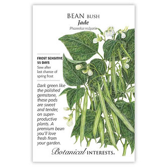 Bean Bush (green) Jade