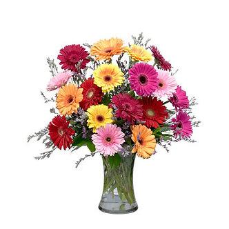 Gerberas in Vase