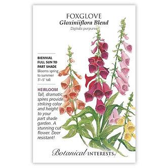 Foxglove Gloxiniiflora Blend