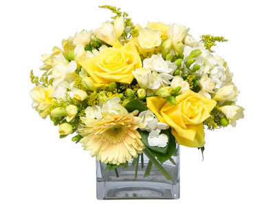 yellow roses and white hydrangea