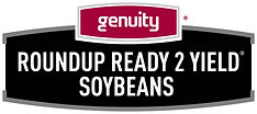 Roundup Ready 2 Yield Soybean Seed