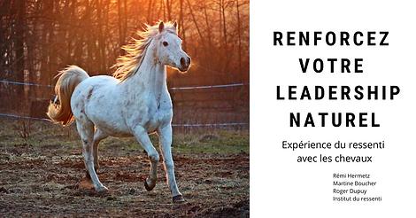 RENFORCEZ VOTRE LEADERSHIP NATUREL Exper