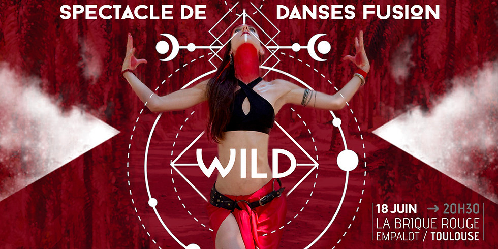 WILD - Spectacle Danse Fusion