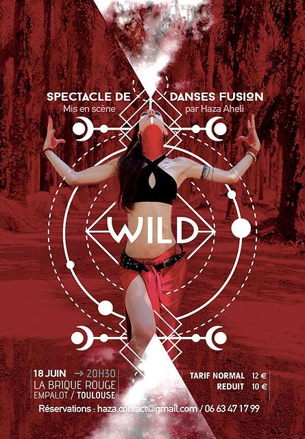 Spectacle Danse Fusion - WILD.jpeg