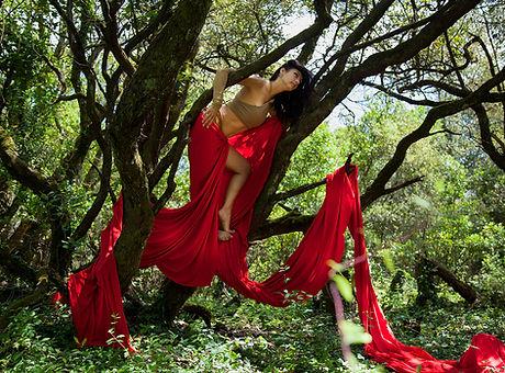 Forest Temple Retraite Ahelia Haza Danse Fusion Yoga Prenatal.jpg