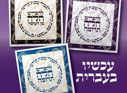 !!! עכשיו בעברית