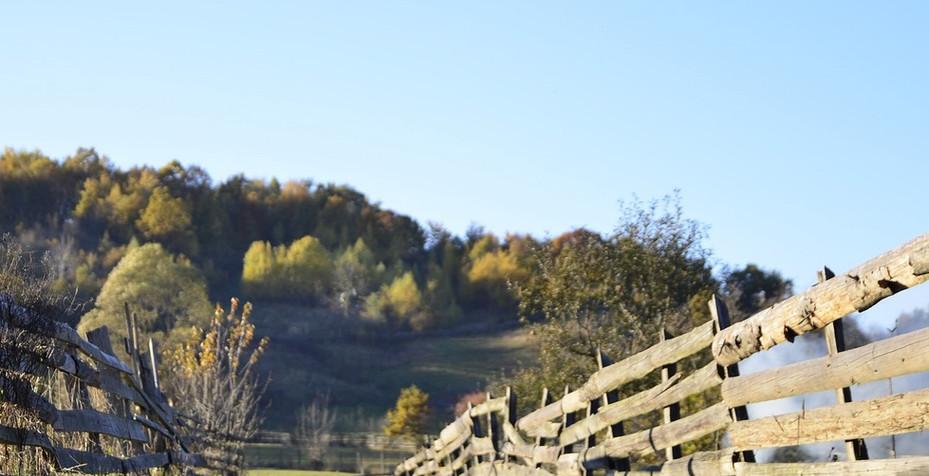 fence-1030932_1920.jpg