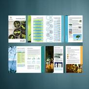 Sustainability Report.jpg
