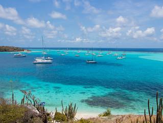 Tobago Cays, o lugar mais lindo das Grenadinas
