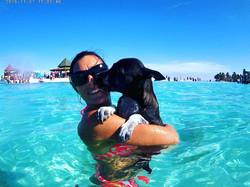 catamaran_mari_dog
