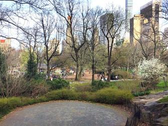 10 cosas que puedes hacer en Central Park