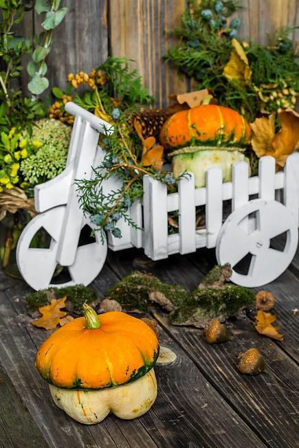 small-pumpkin-wooden-background-autumn.jpg