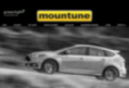 Mountune.JPG