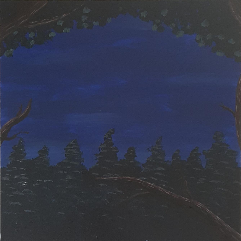 'Nachtklauwen'