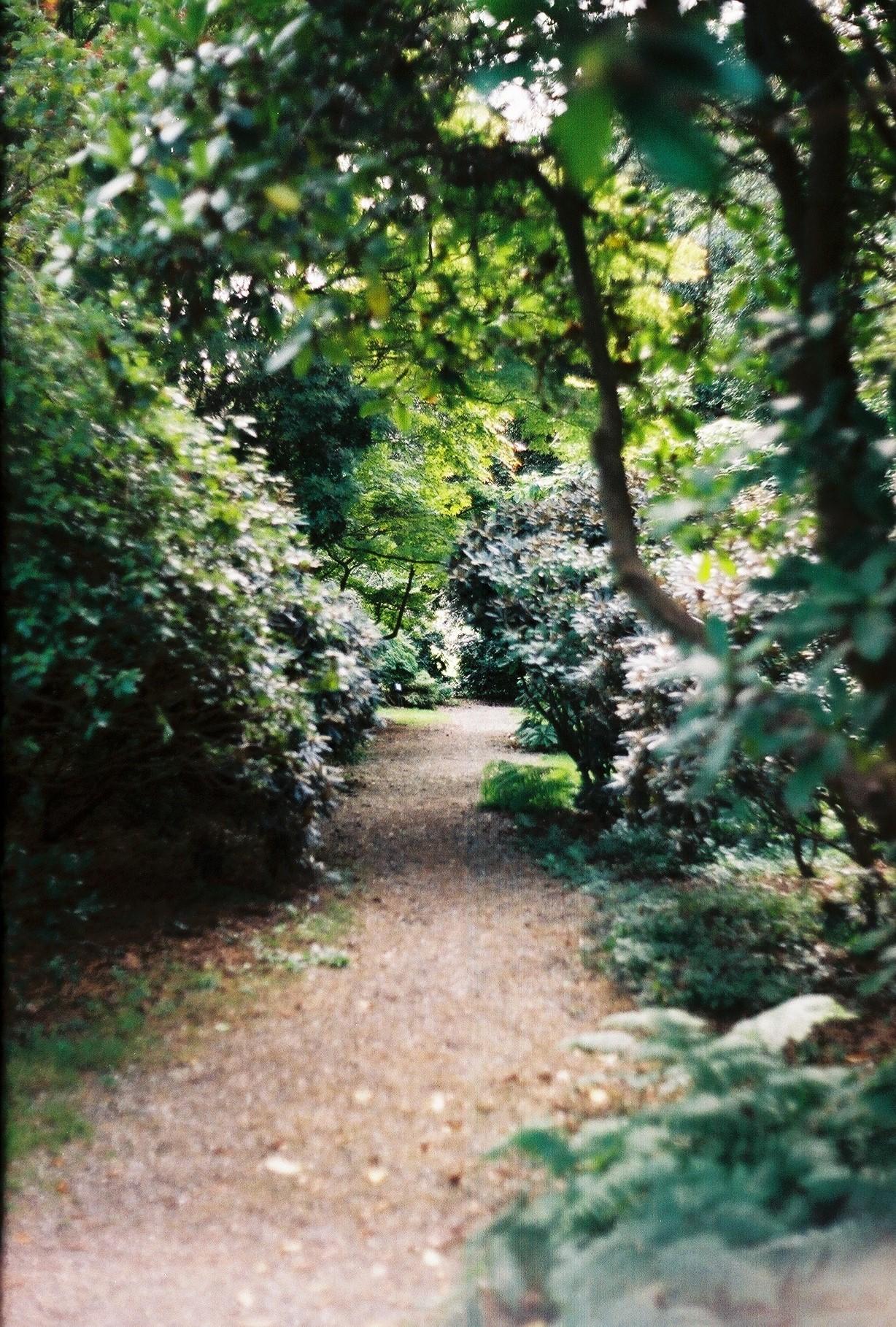 'Pad van d'Orangerie'