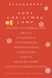 4 DAY CHRISTMAS BASEBALL CAMP