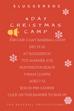4 DAY CHRISTMAS BASEBALL CAMP
