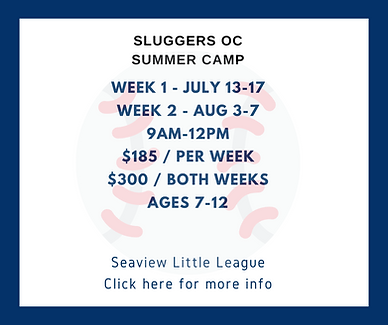 sluggers oc summer camp.png