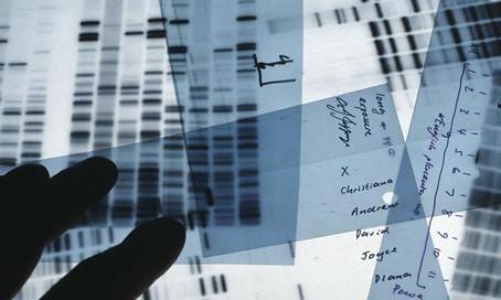 Valido l'accertamento sul DNA realizzato senza garanzie se l'interessato non era indagato o indagabi