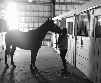 Girl and horse in barn